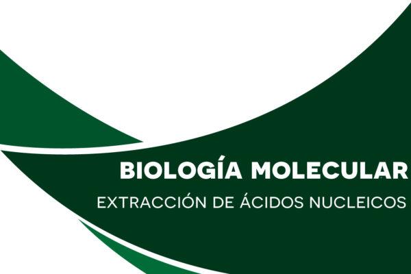 Extracción de ácidos nucleicos